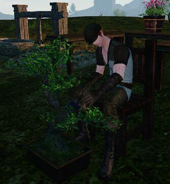 Tree vend