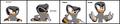 Thumbnail for version as of 04:41, May 20, 2012