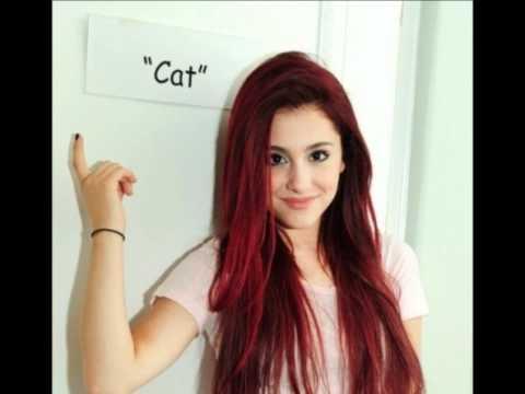 File:Cat n.jpg