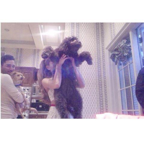 File:Ariana and Ophelia .jpg