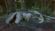 White T-Rex unconcious