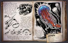 Jellyfish Dossier
