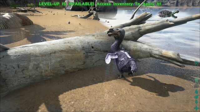 File:ARK-Dodo Screenshot 004.jpg
