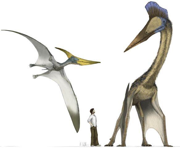File:Hatzegopteryx.jpg