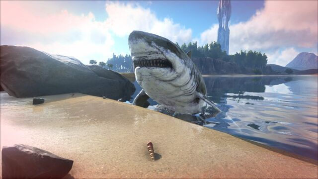 File:ARK-Megalodon Screenshot 003.jpg