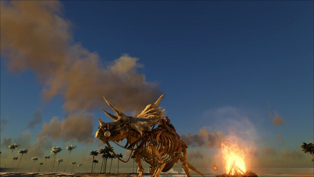 File:ARK-Skelesaur Triceratops 002.jpg