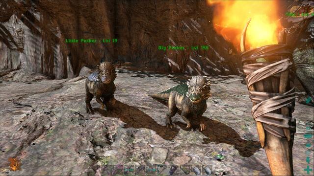 File:ARK-Pachycephalosaurus Screenshot 008.jpg