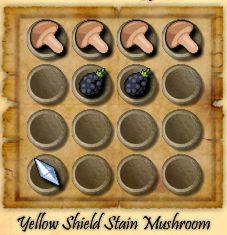 File:Yellowshieldmushroom.jpg
