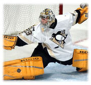 Marc-Andre Fleury23