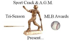 Baseballawardsscagm