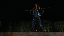Dinah Drake in the field