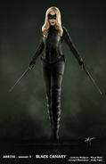 Black Canary concept artwork