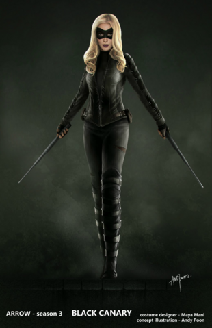 File:Black Canary concept artwork.png