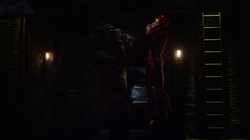 Grodd lifts Barry by the throat