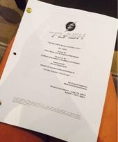 The Flash script title page - The Man Who Saved Central City