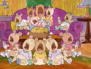 The Baby Orchestra
