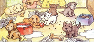 Pet shop dogs book
