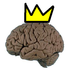 File:KingBwains.png