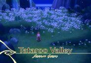 Tataroo Valley (TotA)