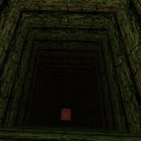Oubliette Dungeon Live 3