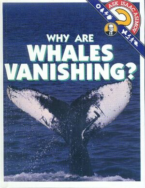 A why are whales vanishing