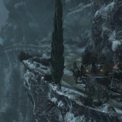 Ezio en Leandros zitten aan elkaar vast