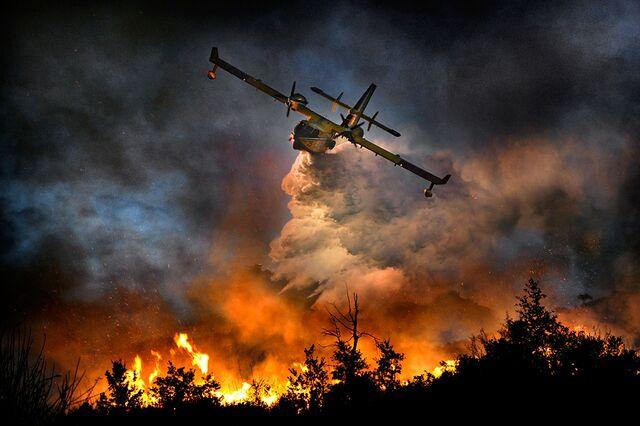 File:Forest-fire (1).jpg