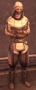 Male Assassin Level 1 Armor