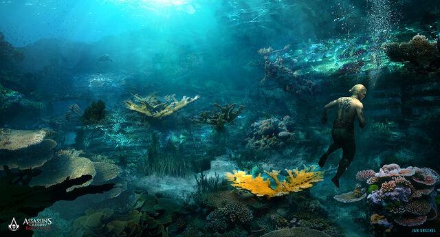 File:AC4 - Florida Open Water by janurschel.jpg