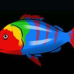 小丑鲷 - 稀有度:普通,尺寸:小