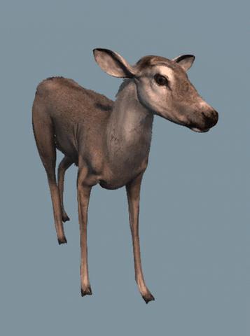 File:DB Deer.png