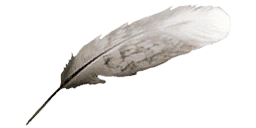 Bestand:Feather AC2.png
