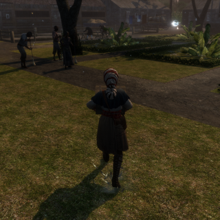 Aveline infiltreert de plantage