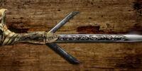 Cane-sword
