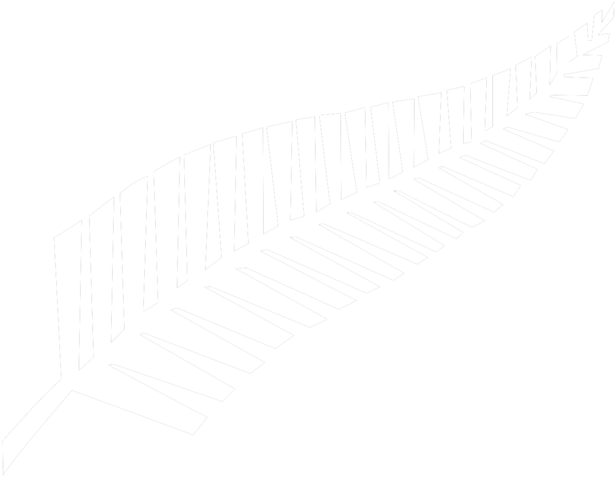 File:Silver fern flag.png