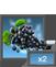 PL grapes 2