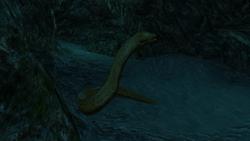 AC4 Moray Eel