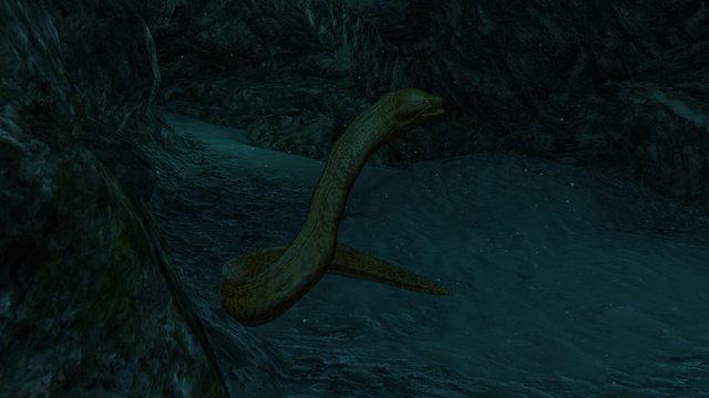 File:AC4 Moray Eel.png