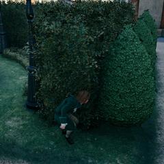 Arno verstopt zich voor de <a href=