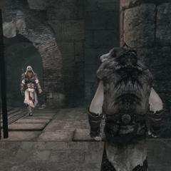 Ezio sluit een vluchtende volgeling in.