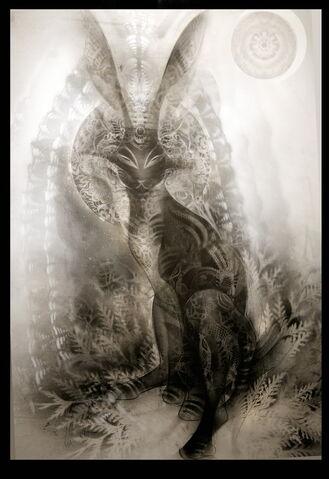 File:Black rabbit of inle.jpg