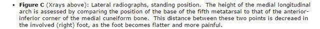 File:PTTS Description Foot xrays Insert5.jpg