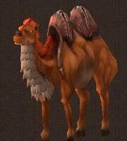 Starved Camel