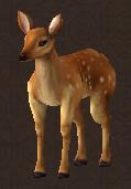 Monstrous red deer