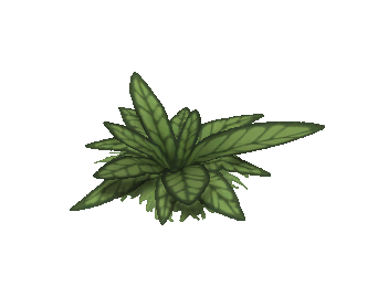 File:Plant.png