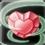 Crystalhealing-skill