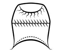 Symbol innavedr