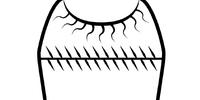 Innavedr (Symbol)