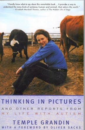 File:Thinkinginpictures.jpg