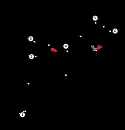 Circuit Pedralbes